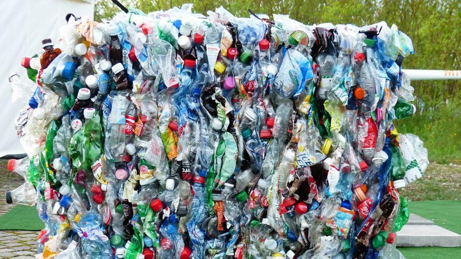 Do kina za kilka plastikowych butelek? Radni Bielan postawią
