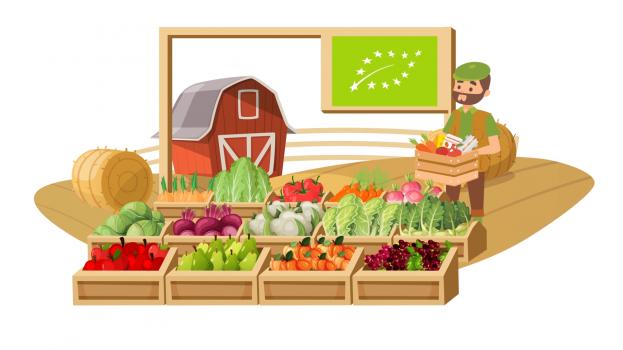 skad-sie-biora-produkty-ekologiczne