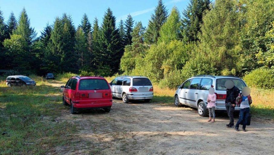 Mașini care livrează ciuperci românești în pădurea Podkarpassi (foto: districtul forestier Tukla)