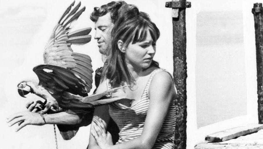 """Anna Karina z Jean Paul'em Belmondo w 1965 roku, w filmie """"Szalony Piotruś"""" (fot. Keystone-France/Gamma-Keystone via Getty Images)"""