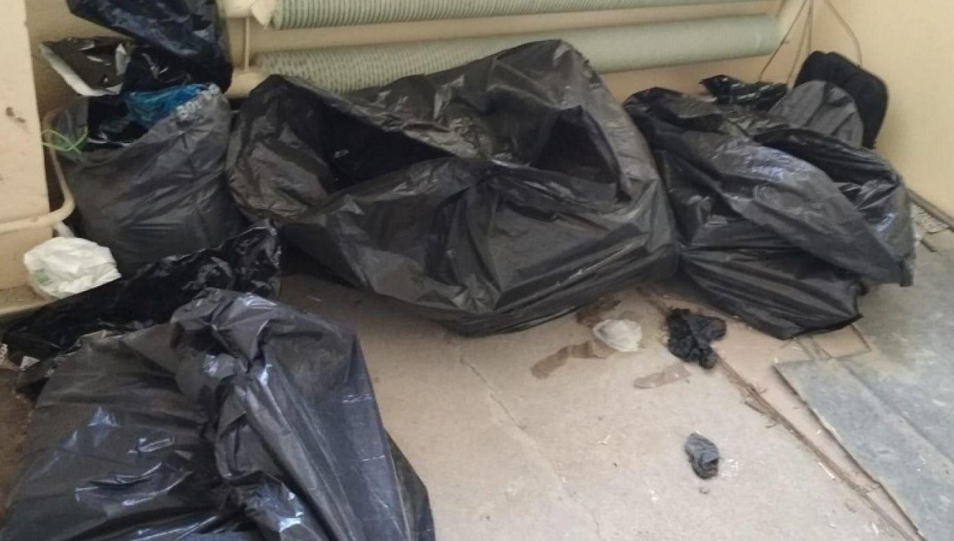 Podczas przeszukania magazynu policjanci znaleźli sporej wielkości pakunki z narkotykami (fot. policja.pl)