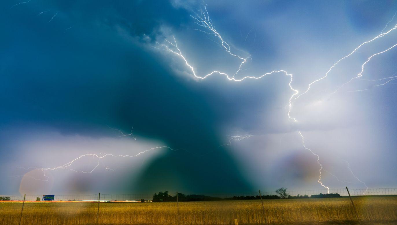W czasie burzy unikać należy otwartych przestrzeni i nie chronić się pod drzewami – przypomniano (fot. arch. PAP/Łukasz Ogrodowczyk)
