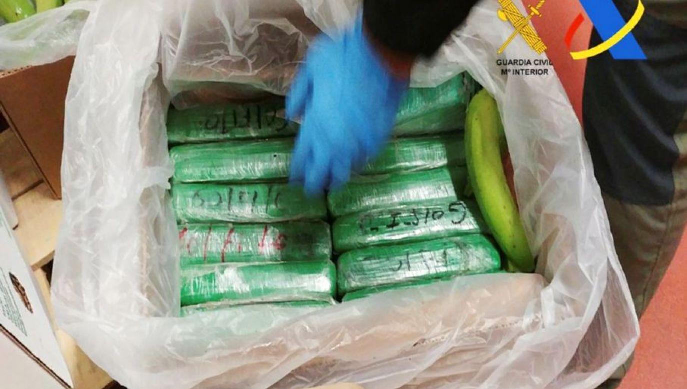 Co kilka miesięcy policjanci w różnych krajach przejmują kokainę w bananach, którą źle nadali przemytnicy (fot. Guardia Civil-Ministerio del Interior, zdjęcie ilustracyjne)