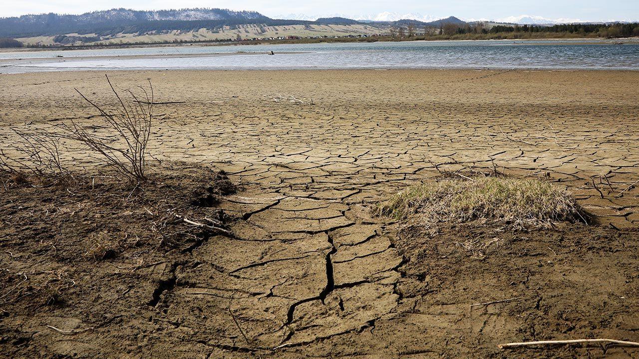 Ostrzeżenie dotyczy suszy hydrologicznej (fot. PAP/Grzegorz Momot)