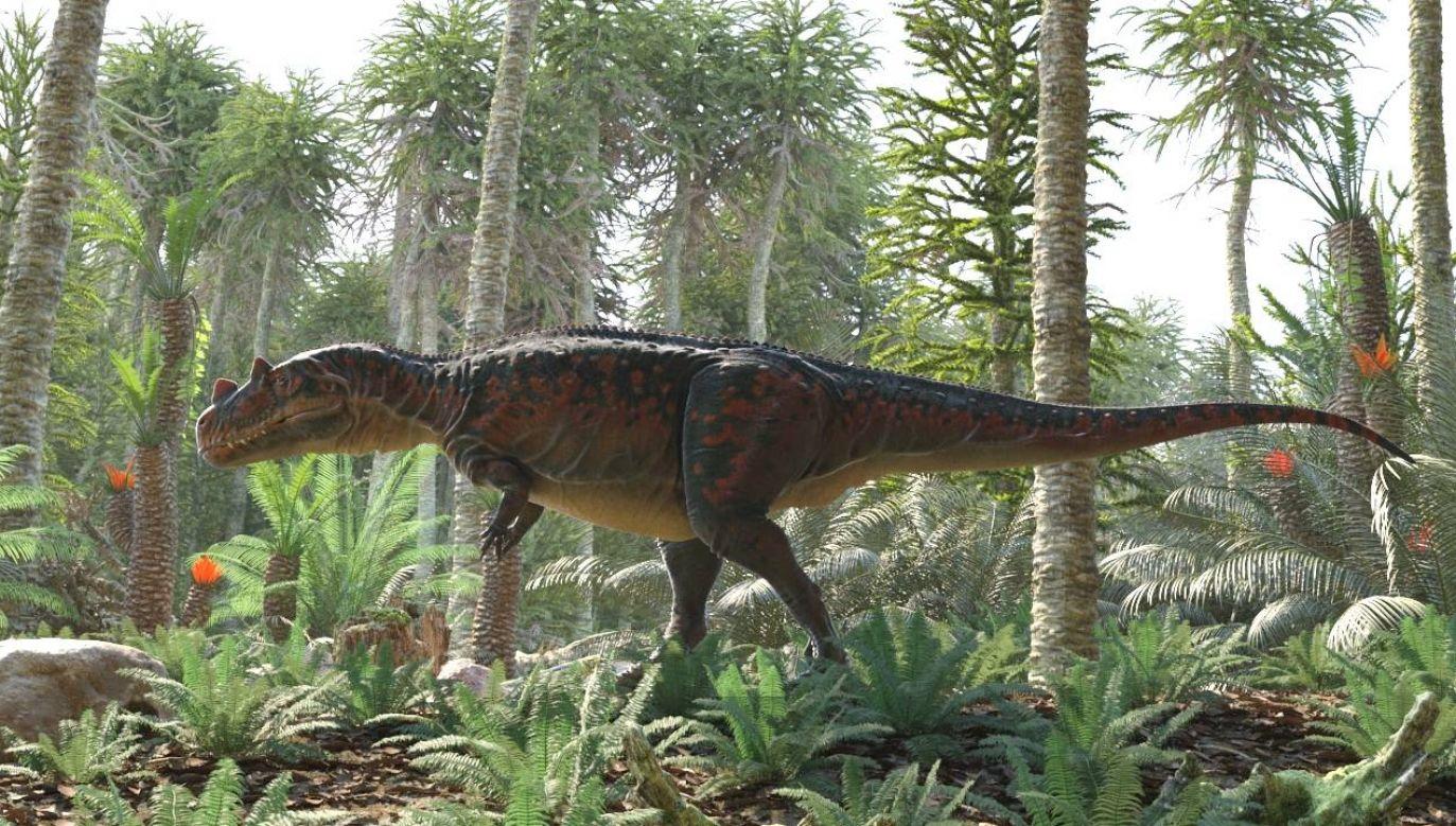 Dinozaury wyginęły około 66 mln lat temu (fot. Wiki 4.0/Oleg Kuznetsov/3depix)