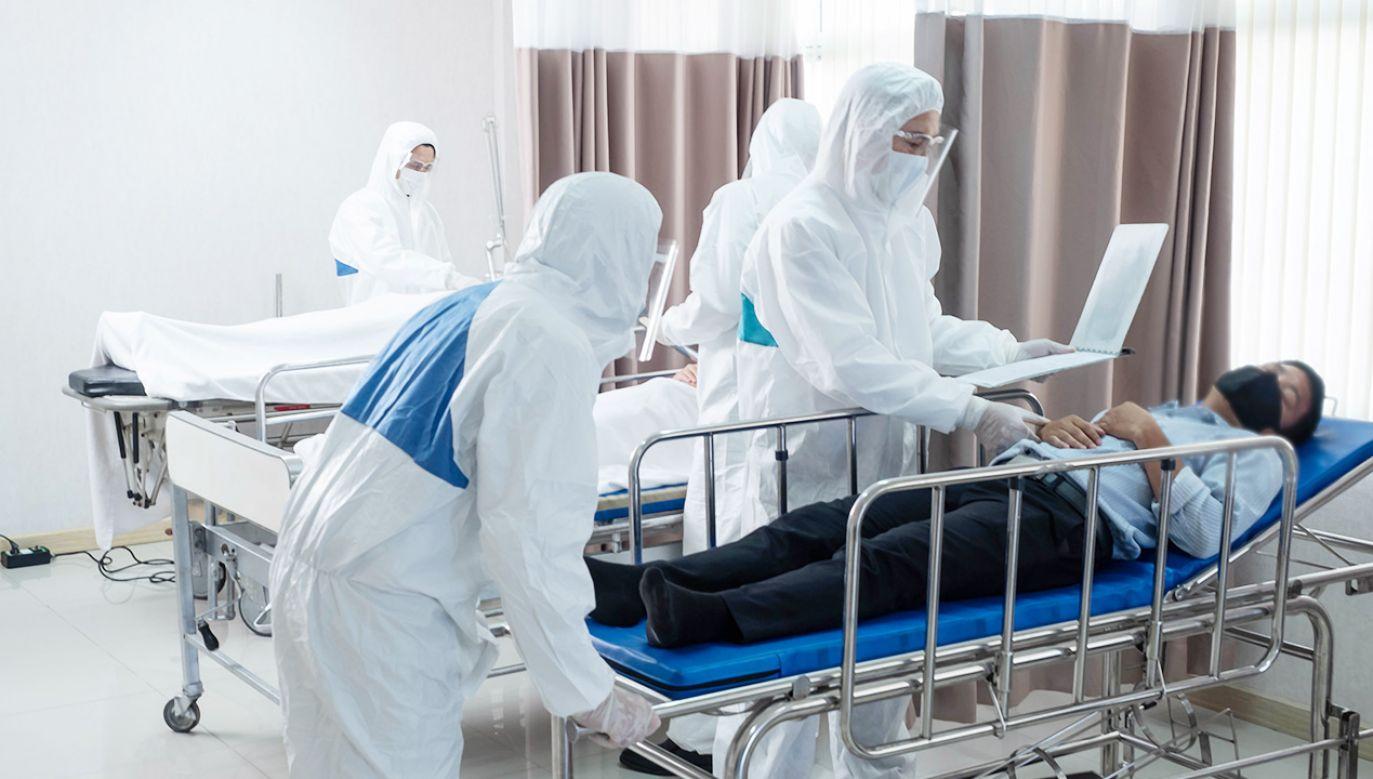 """Co to mukormykoza? Groźny """"czarny grzyb"""" atakuje osłabiony koronawirusem organizm (fot. Shutterstock)"""