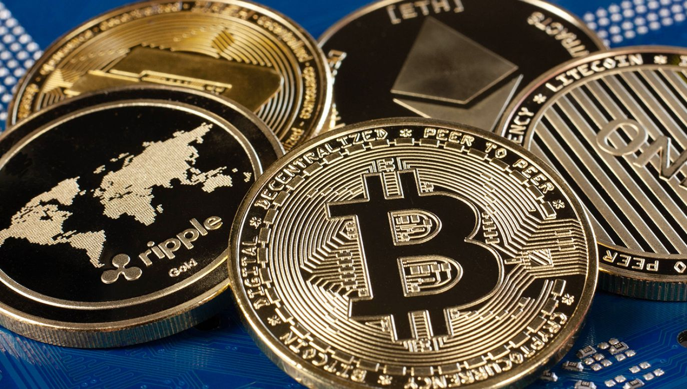 Straty łącznie przekraczają kilka milionów złotych (fot. Shutterstock/Melena-Nsk)