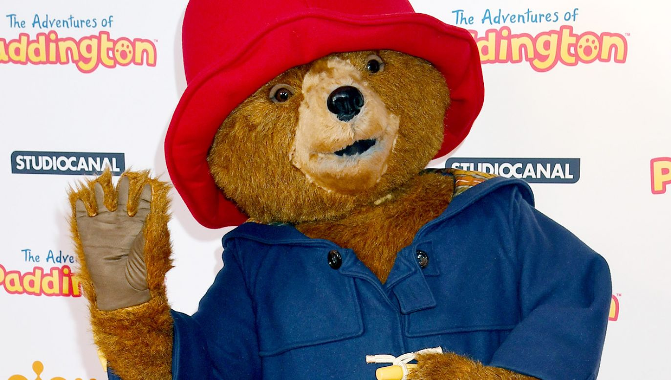 Miś Paddington (fot. Dave J Hogan/Getty Images)