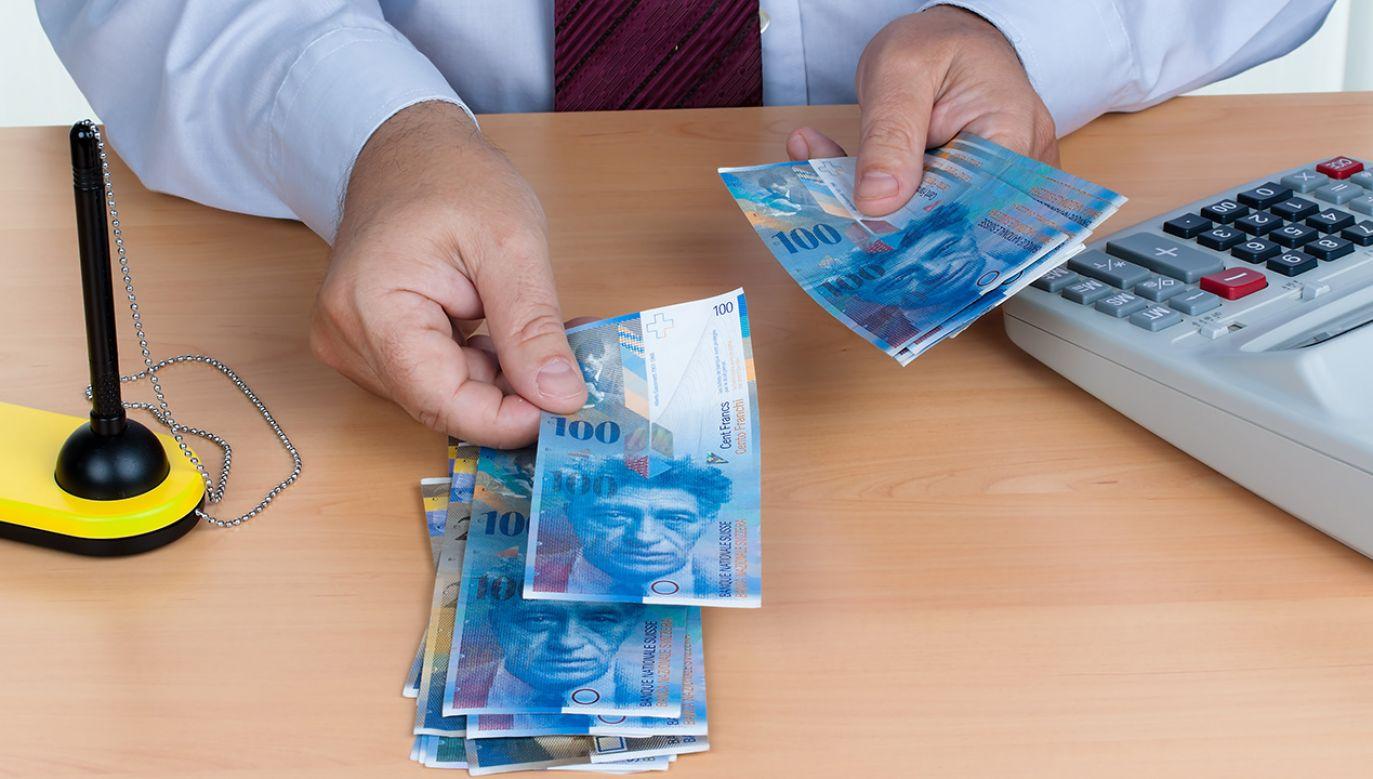 Zdaniem Business Center Club, przez polskie sądy przetoczy się fala pozwów w sprawie kredytów frankowych (fot. Shutterstock/Lisa S.)