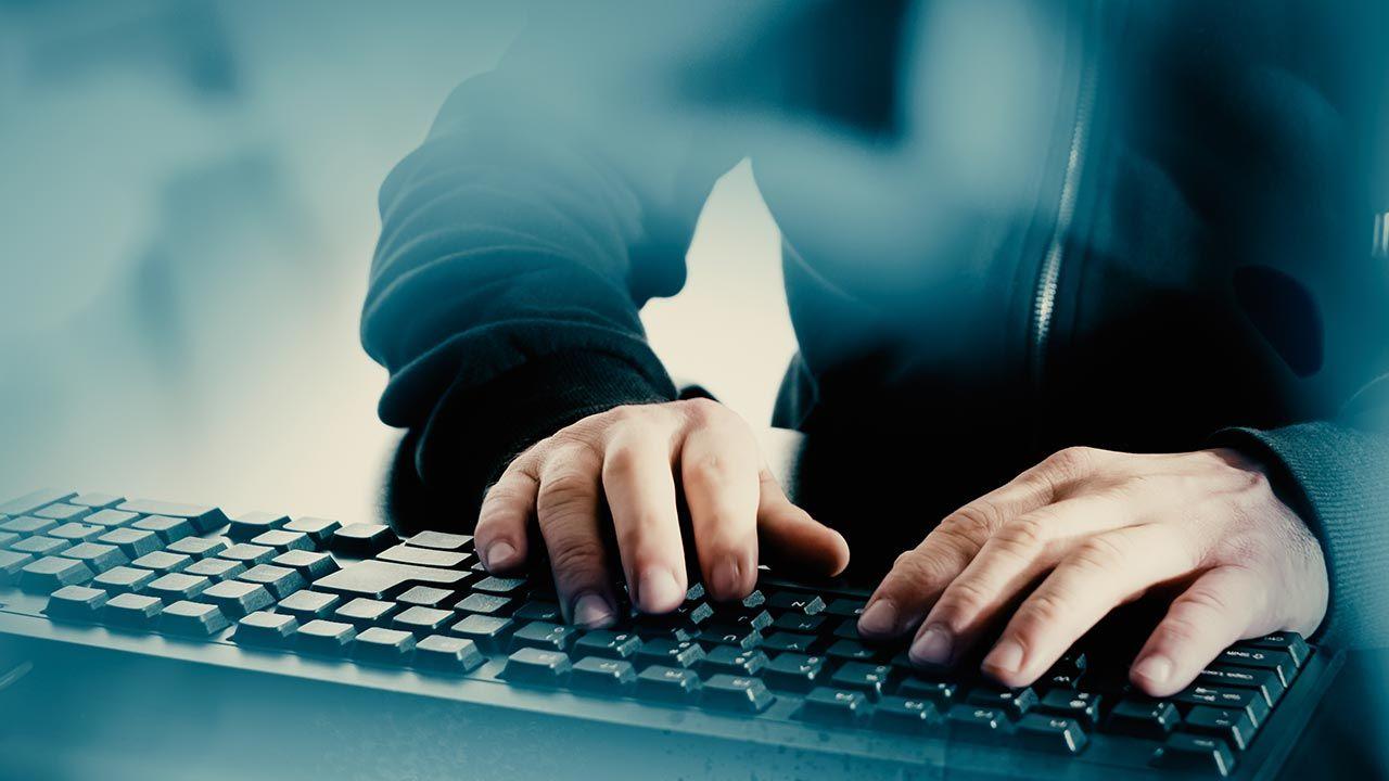 36-latek korespondował w rzeczywistości przez internet z łowcami pedofili (fot. Shutterstock/PabloLagarto)