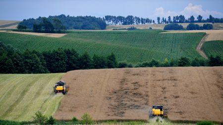 Ardanowski: trzeba poprawić warunki kredytowania rolnictwa (fot. PAP/D. Delmanowicz)