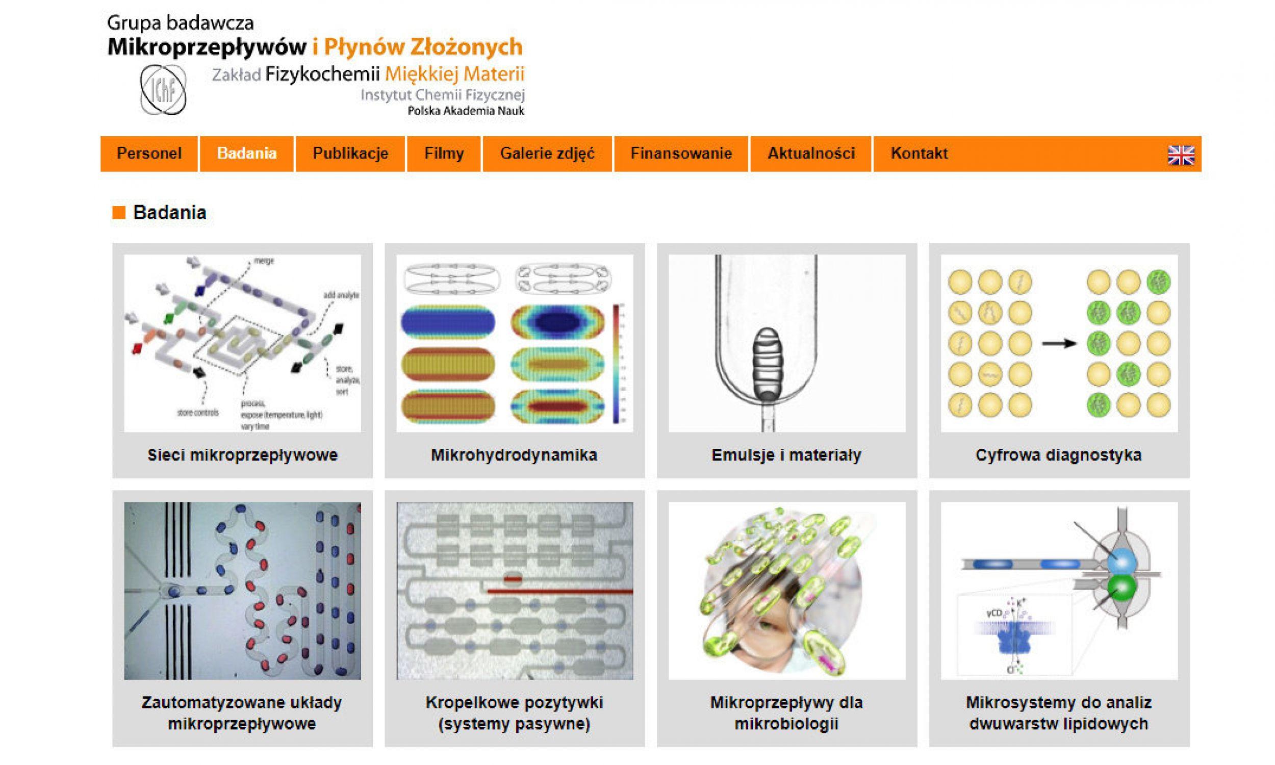 Grupa naukowców pod kierunkiem prof. Piotra Garsteckiego pracuje w Instytucie Chemii Fizycznej PAN nad miniaturowymi urządzeniami, dzięki którym probówki możemy zastąpić kroplami o objętości wyrażanej w mikrolitrach. Na zdjęciu strona projektu: http://ichf.pong.pl. Fot. printscreen