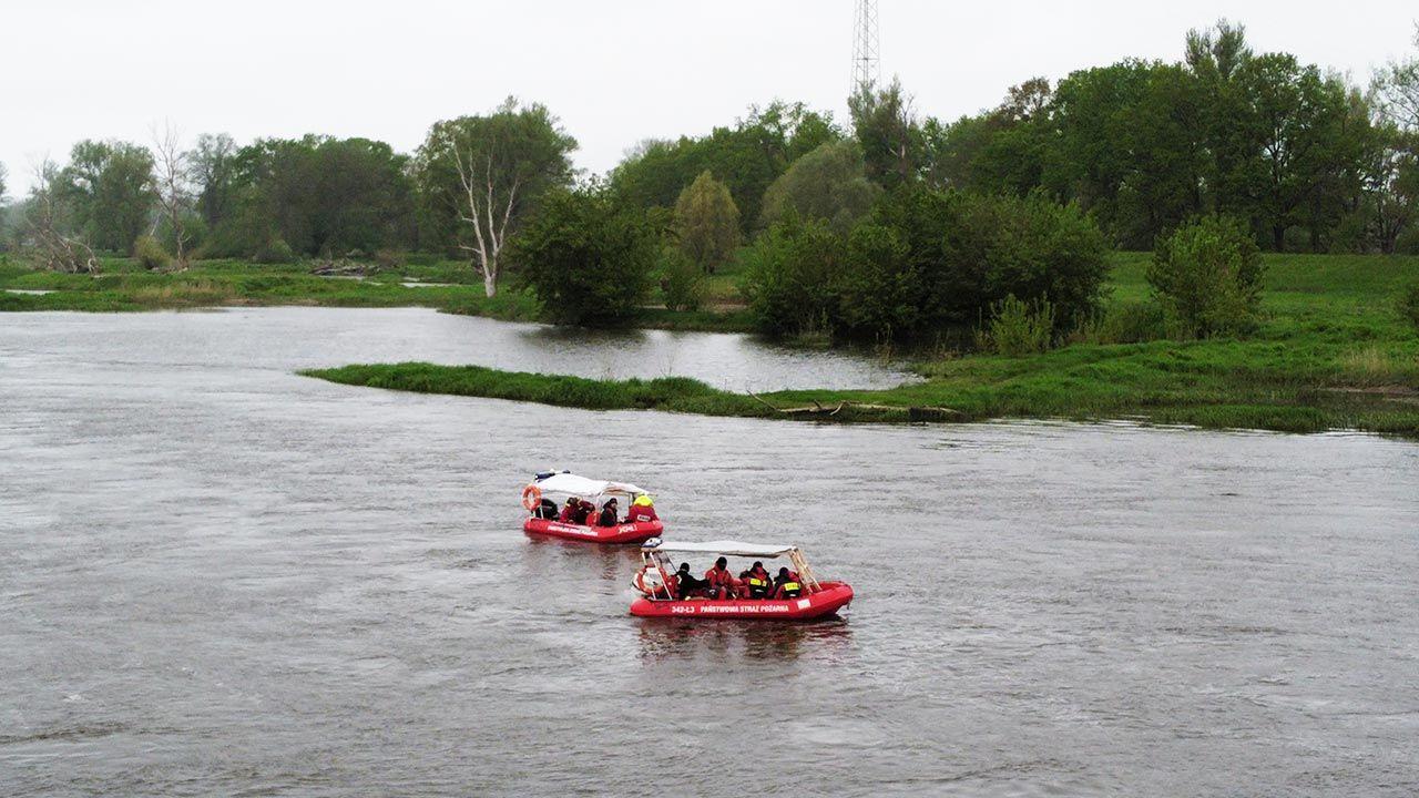 Ekipy poszukiwawcze pracowały na Odrze w kilku lokalizacjach (fot. PAP/Lech Muszyński)