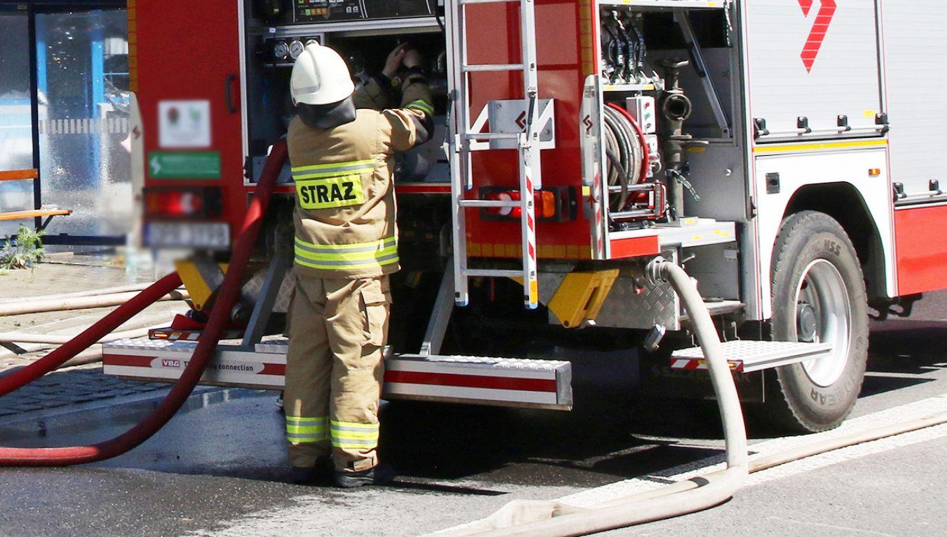 Na miejscu pracuje kilkudziesięciu strażaków (fot. PAP/Krzysztof Świderski; zdjęcie ilustracyjne)