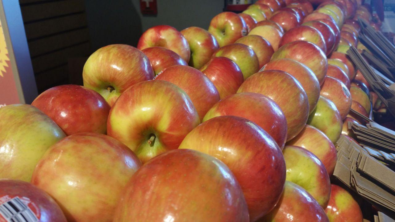 Do niszczenia żywności dochodzi w Rosji niemal codziennie (fot. publicdomainpictures.net/ Circe Denyer)