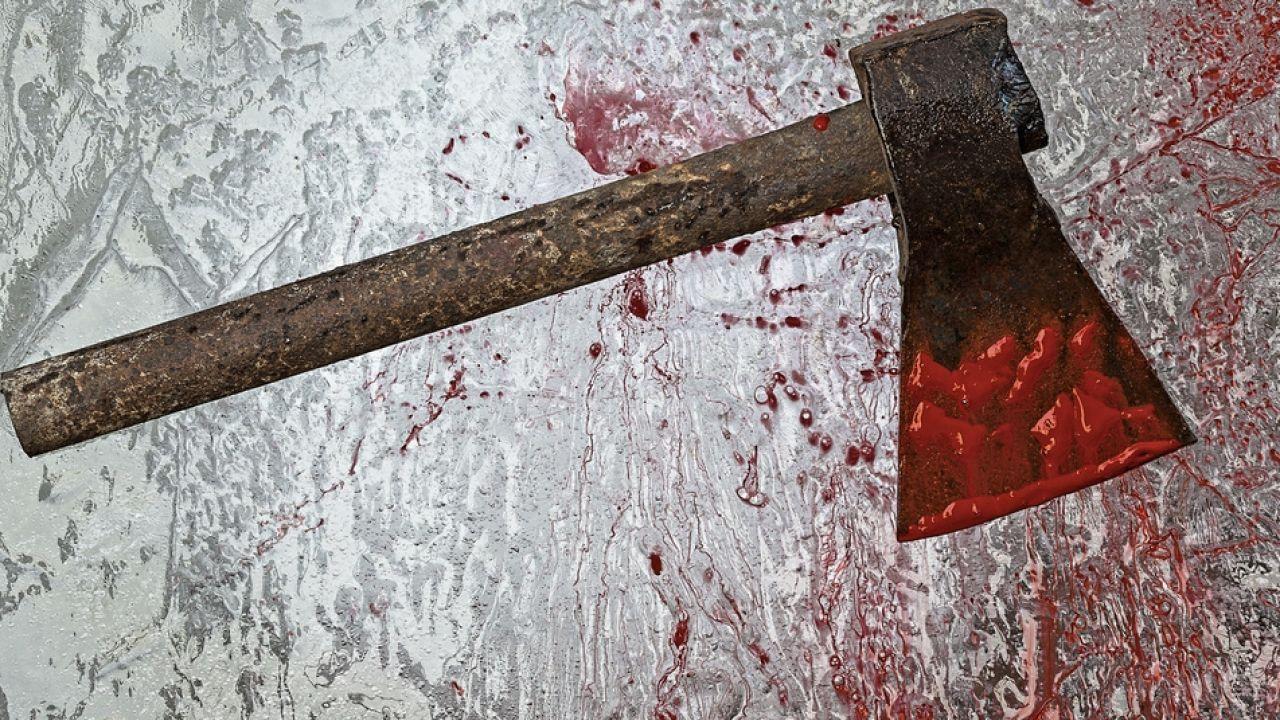Marcel C. zabił rodzinę siekierą, bo chciał się zemścić (fot. Shutterstock/Peyker)