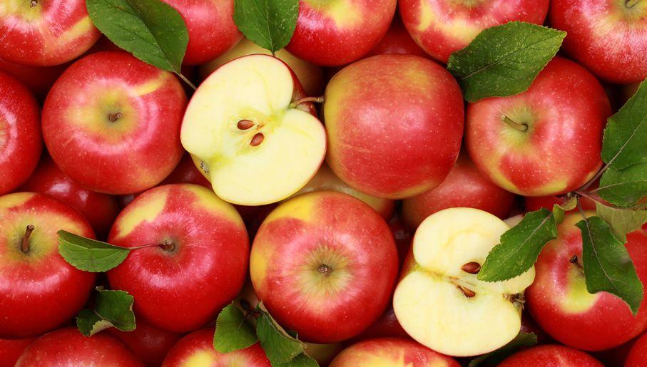 buty do biegania najnowszy zasznurować Rekordowo wysokie ceny jabłek. Kosztują już tyle co ...