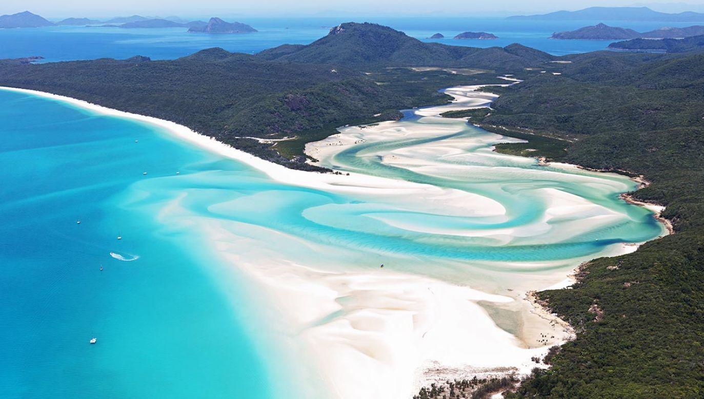 Najpiękniejszą plażą na świecie jest  Whitehaven Beach (fot. Shutterstock/Tanya Puntti)