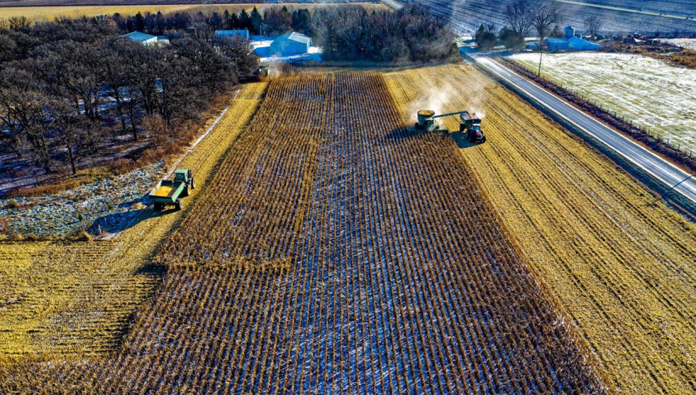 Nowej umowy obawiają się kanadyjscy rolnicy (fot. Pexels)