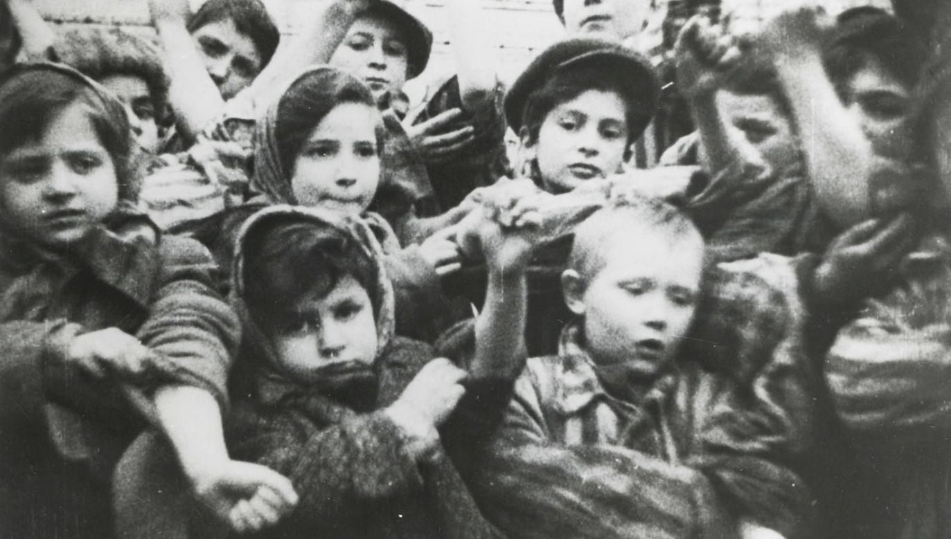 """""""Niemcy zawsze będą ponosili odpowiedzialność za te okropne czyny"""" – zadeklarował ambasador Nikel (fot. PAP/EPA/www.auschwitz.org)"""