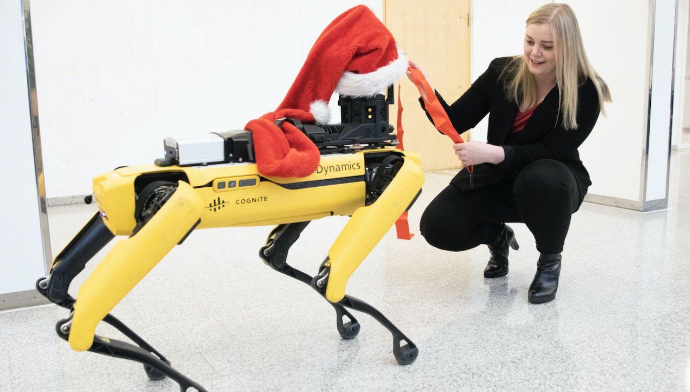 Zwierzęta-roboty mogą być zamiennikiem naszych prawdziwych futrzanych przyjaciół (fot. PAP/EPA/Berit Roald, zdjęcie ilustracyjne)