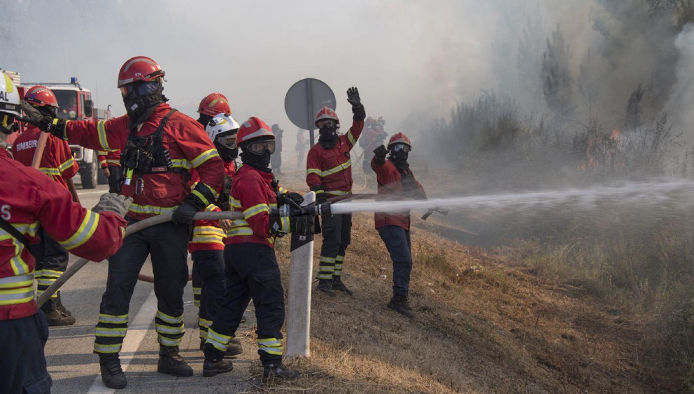 W trakcie walki z pożarami obrażenia odniosło ośmiu strażaków (zdjęcie ilustracyjne) (fot. Horacio Villalobos - Corbis/Corbis via Getty Images)