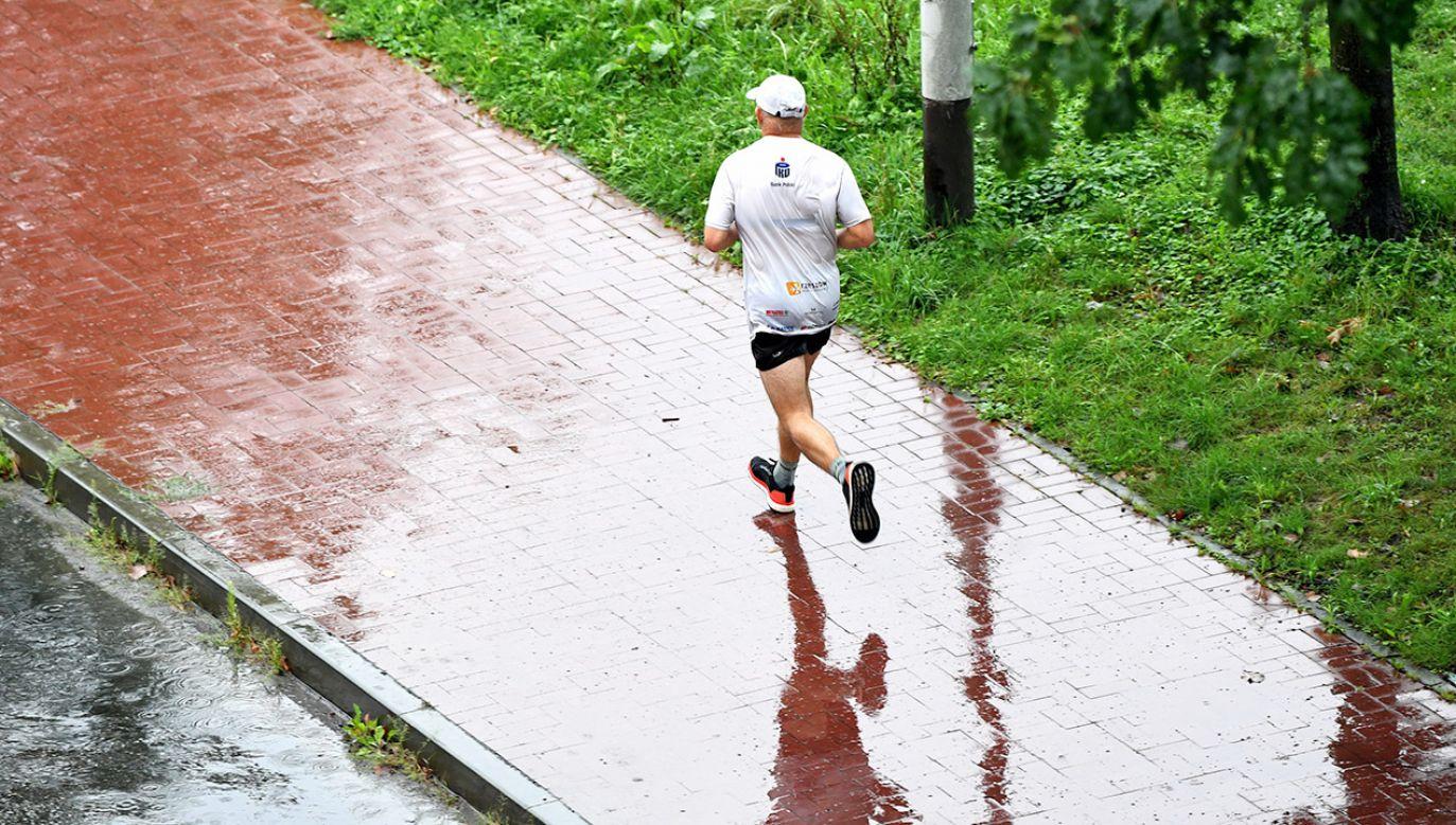 Opady deszczu i burze będą zapowiedzią załamania pogody (fot. PAP/Darek Delmanowicz)