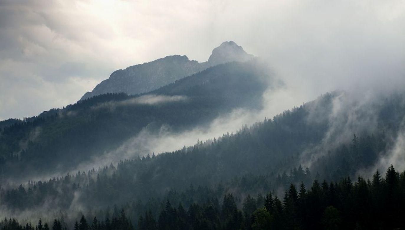 Szlaki są bardzo mokre, na wielu odcinkach błotniste  (fot. Shutterstock/ Miro Novak)