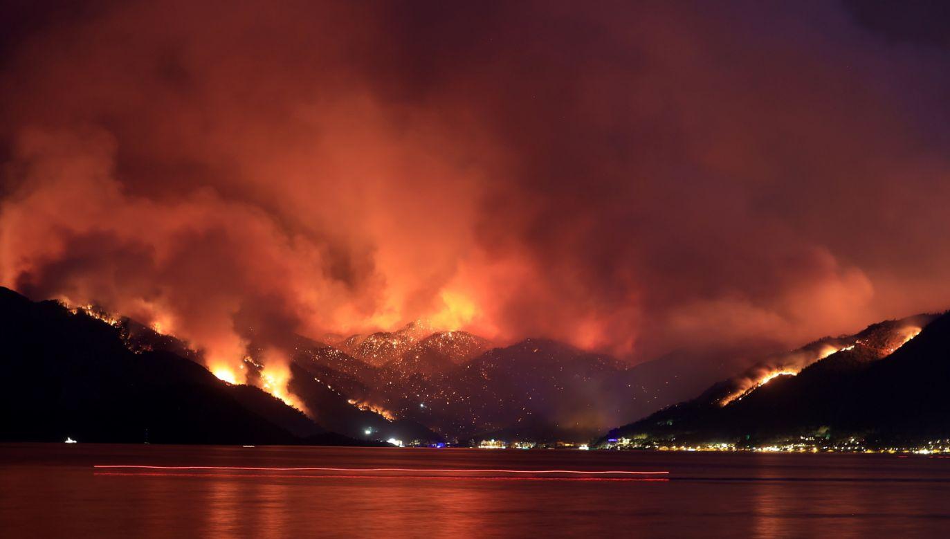Co najmniej pięć osób zginęło w pożarach w Manavgat (fot. PAP/EPA)