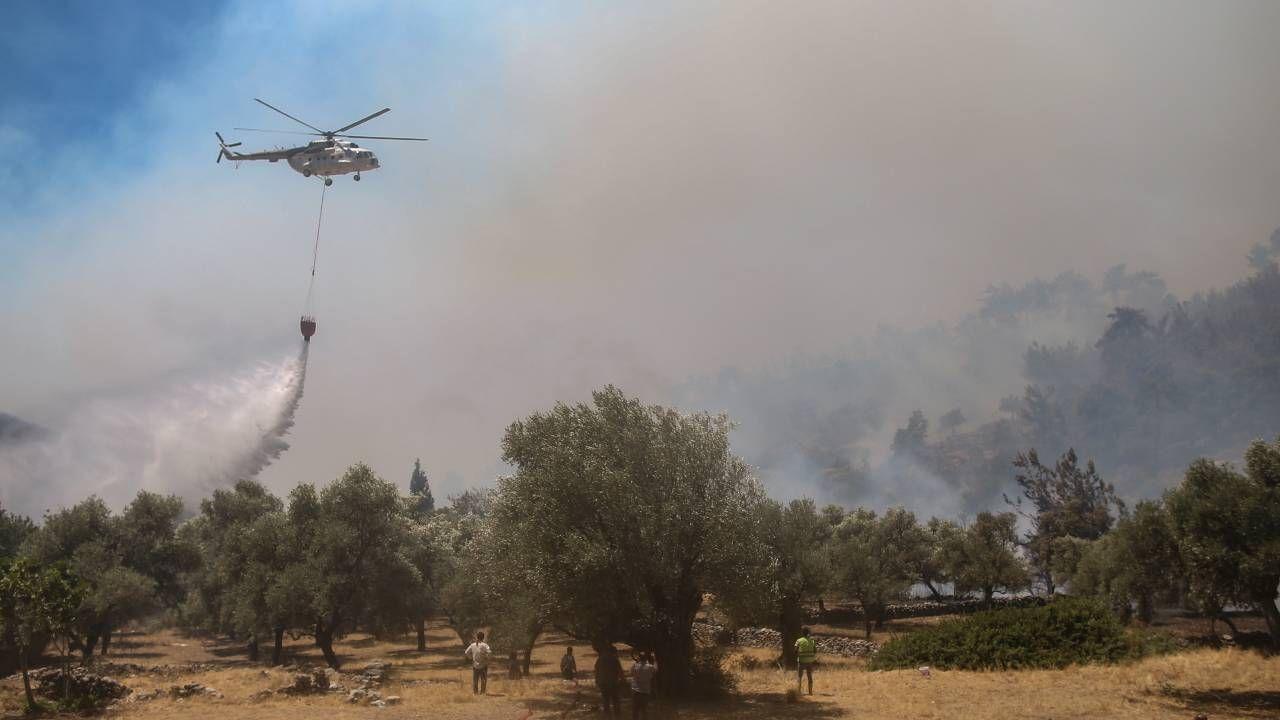 Zdaniem ekspertów pożary są wynikiem zmian klimatycznych (fot. PAP/EPA/ERDEM SAHIN)