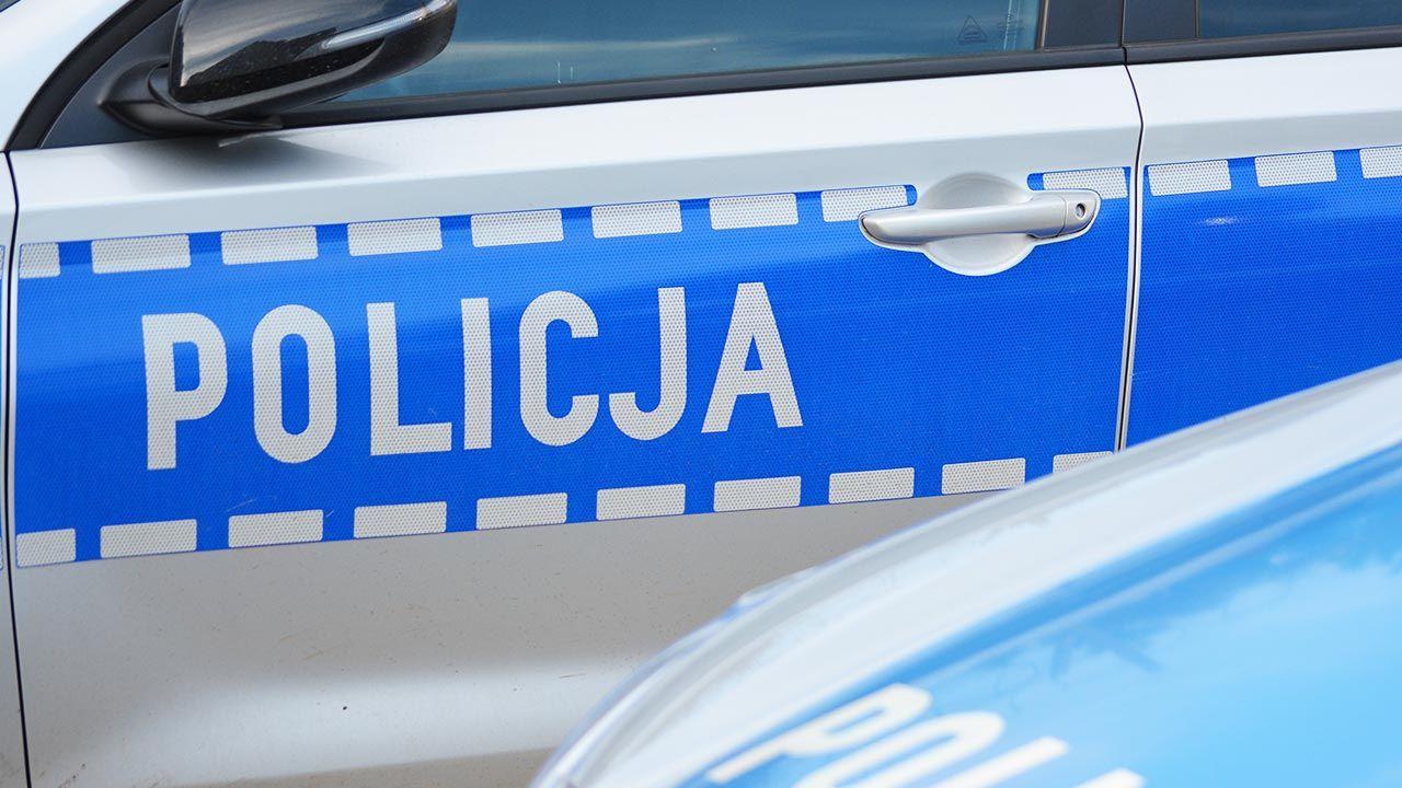 W akcji poszukiwawczej brała udział policja wraz z psami tropiącymi (fot. Shutterstock/DarSzach)