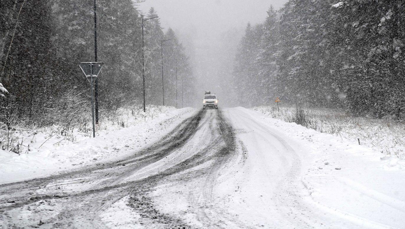 W wielu regionach kraju pojawią się opady deszczu, deszczu ze śniegiem i śniegu (fot. PAP/Darek Delmanowicz)