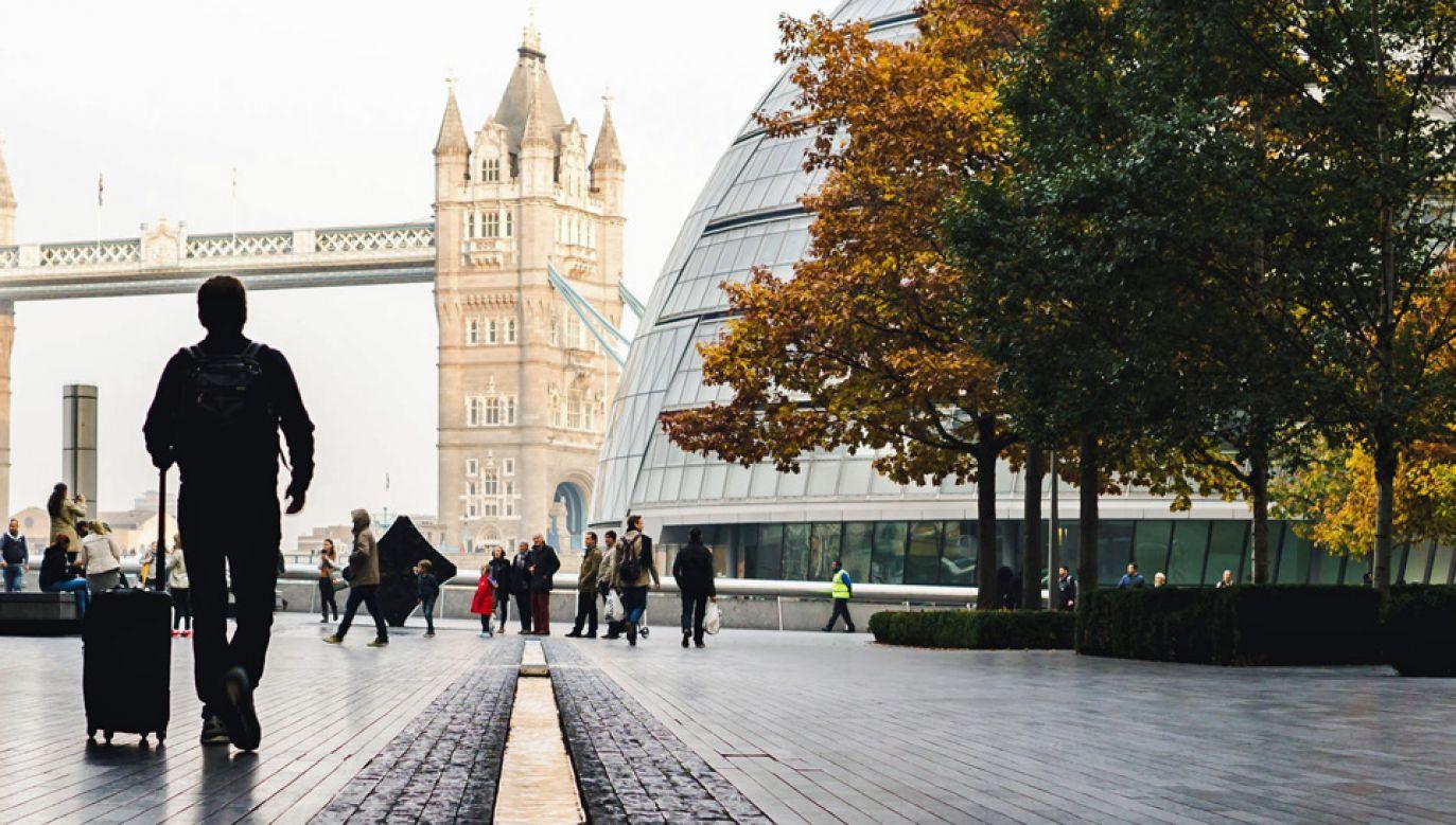 W Wielkiej Brytanii mieszka około miliona Polaków (fot. Pexels)