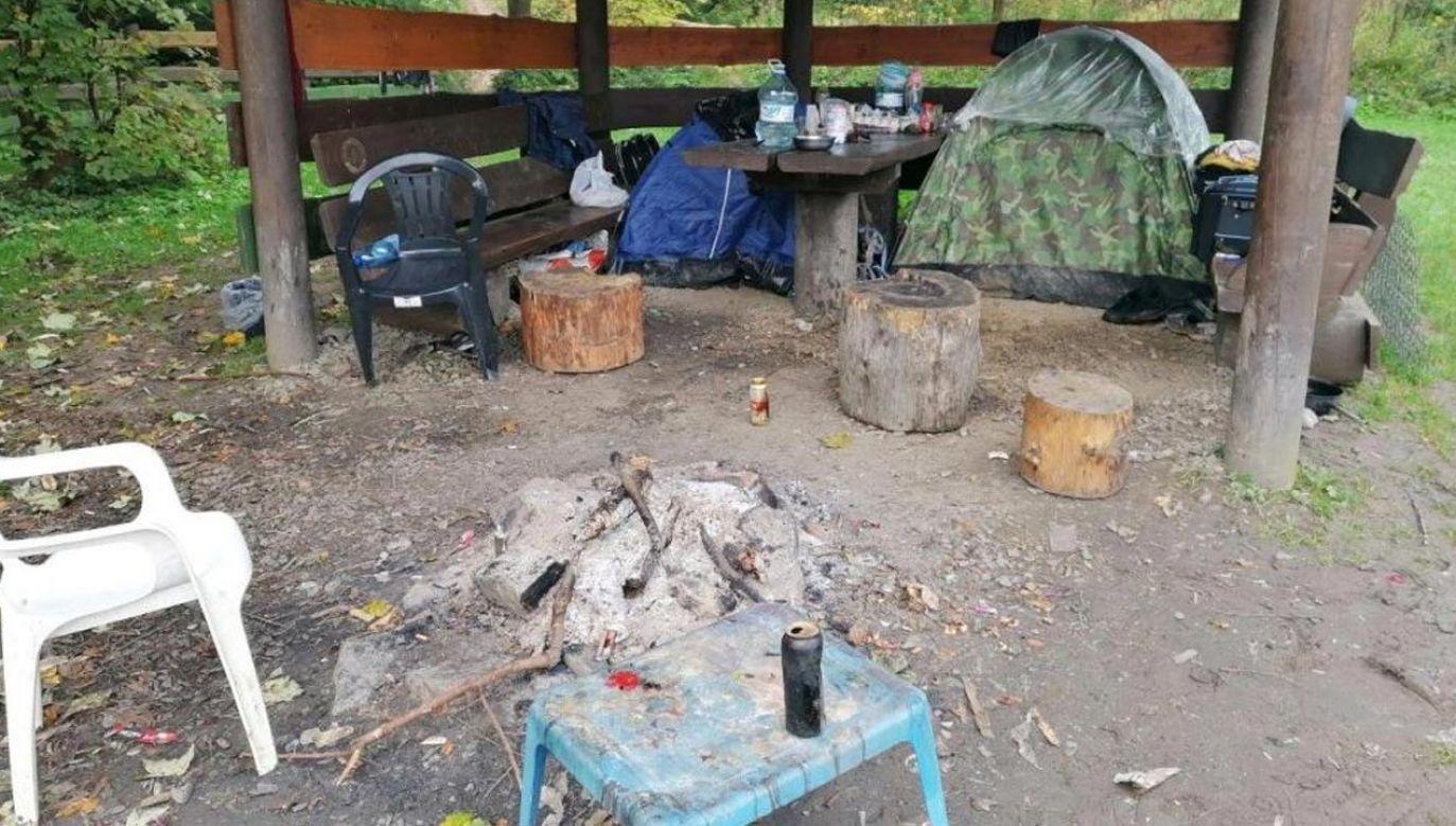 Koczowisko rumuńskich grzybiarzy na Podkarpaciu (fot. Nadleśnictwo Dukla)