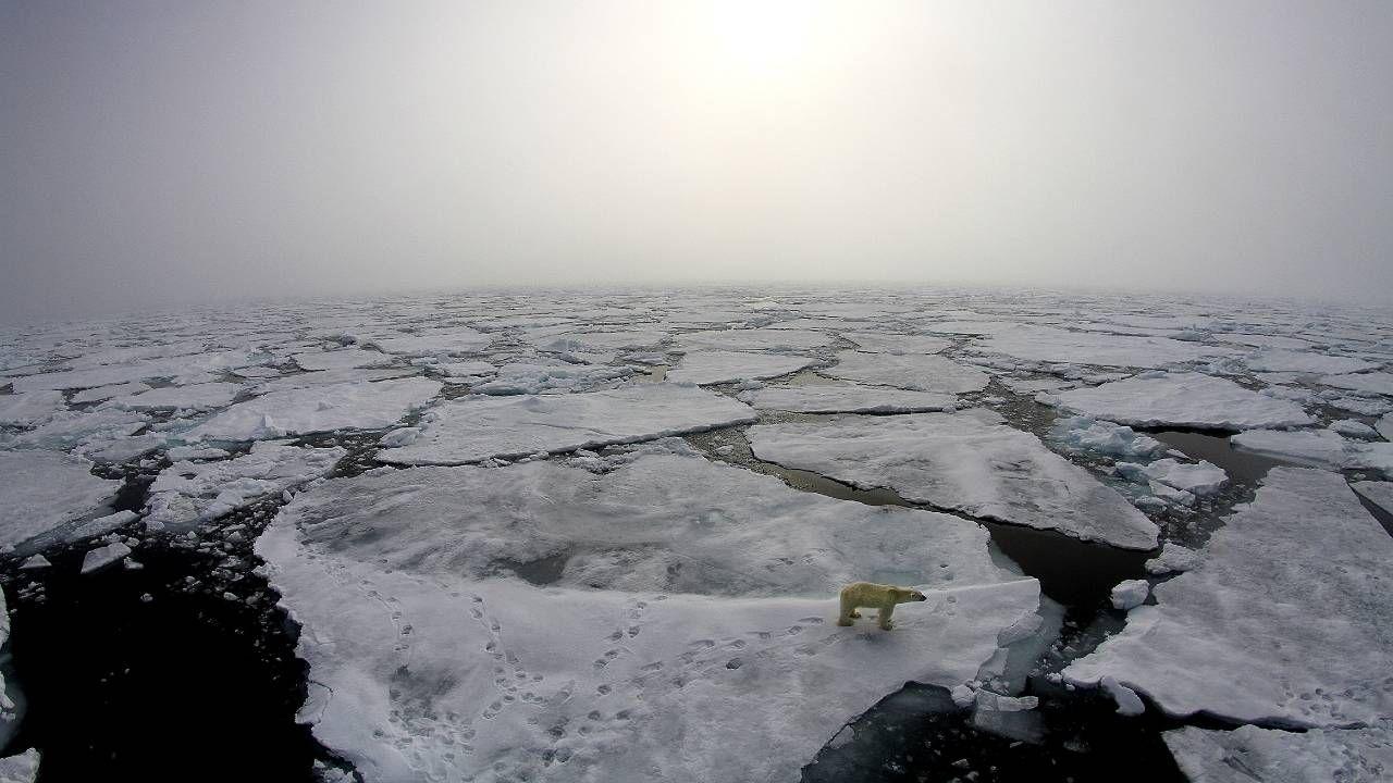 Zakres występowania lodu morskiego mierzony jest od 1978 roku (fot. NASA)