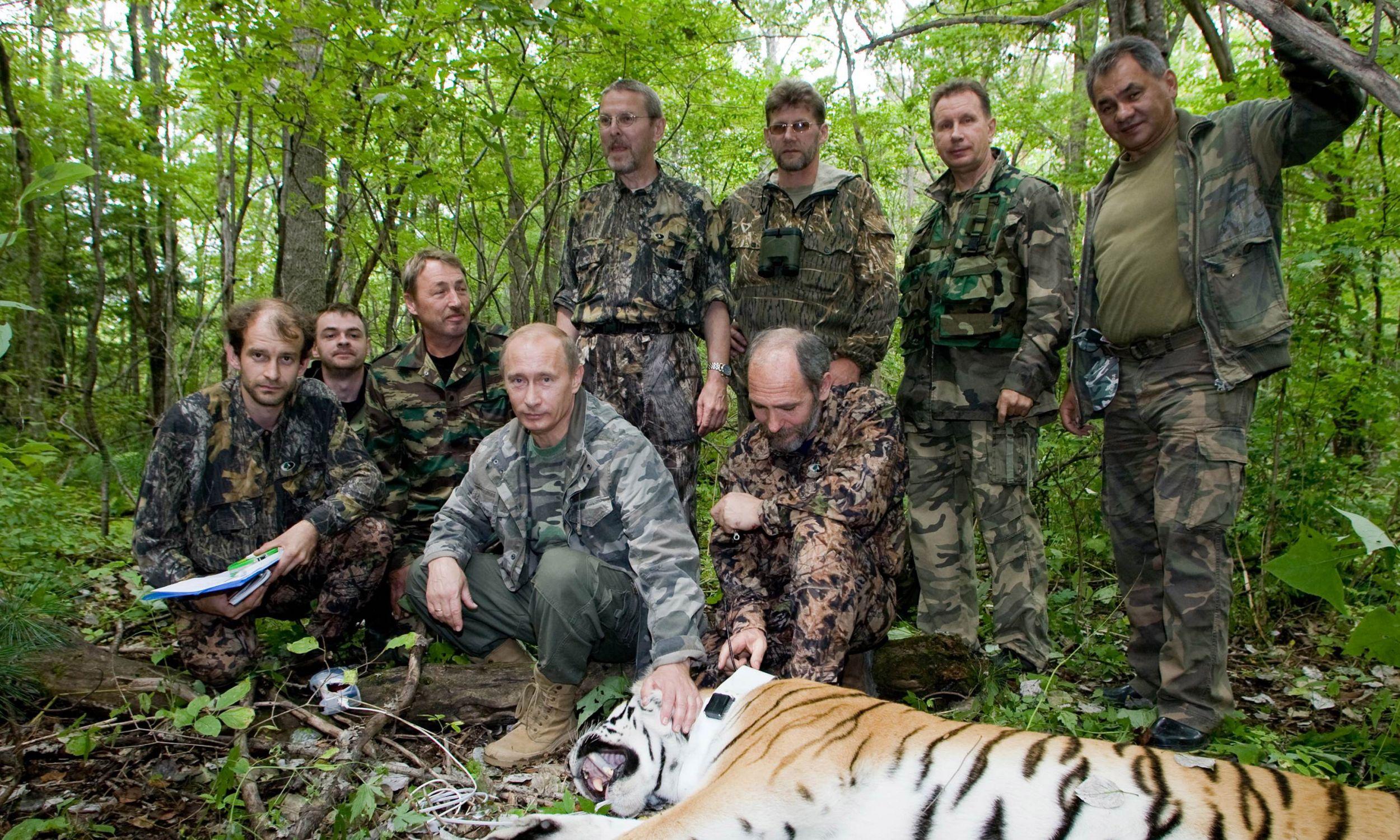 Władimir Putin w listopadzie 2008 roku, jako premier Rosji, podczas wizyty w rezerwacie tygrysów nad Amurem, nieopodal terenów, na których w 1969 roku toczyły się walki sowiecko-chińskie. Chińczycy poluja na tygrysy i części ich ciała wykorzystują w tradycyjnej medycynie - jedno zwierzę jest na czarnym rynku warte ponad 100 tys. złotych. Fot. Animal Press / Barcroft Media / Getty Images
