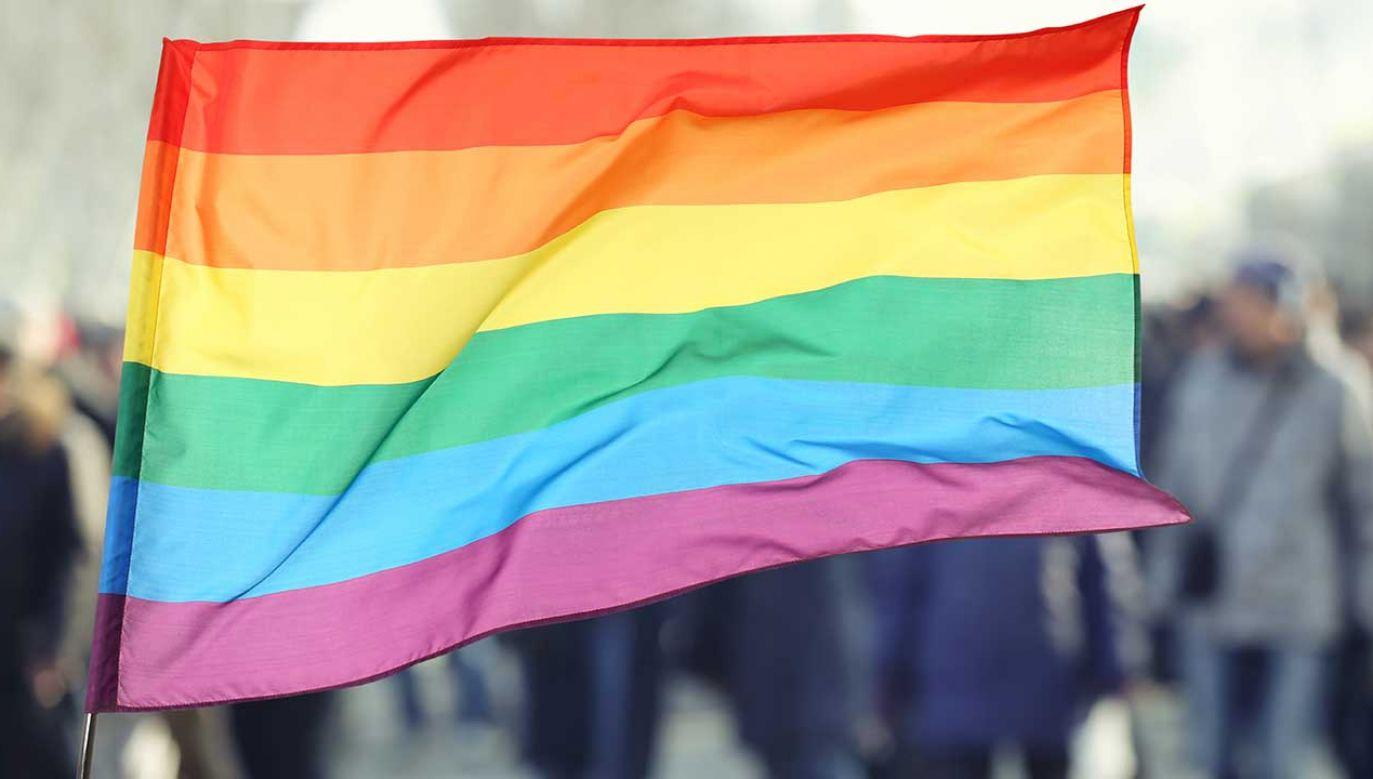 Marsz równości w Zabrzu odbył się po raz pierwszy (fot. Shutterstock/Africa Studio)