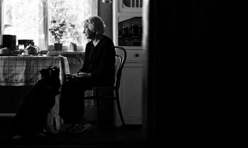 Bohaterka filmu, sędziwa pani Aniela, mieszka z ukochaną suczką Filą w przedwojennej, drewnianej willi w Warszawie. Po latach dzielenia jej z dokwaterowanymi w PRL lokatorami, wreszcie pozbywa się ostatniego z nich. Ale syn nie zamierza zamieszkać w rodzinnym domu. Wręcz dogaduje się z nowobogackim sąsiadem, który chce odkupić i rozebrać willę, bo zasłania mu widok. Oburzona zdradą syna Aniela miała odegrać scenę, że umiera, ale postanawia walczyć o swoje miejsce. Fot. TVP, Remigiusz Przełożny Film