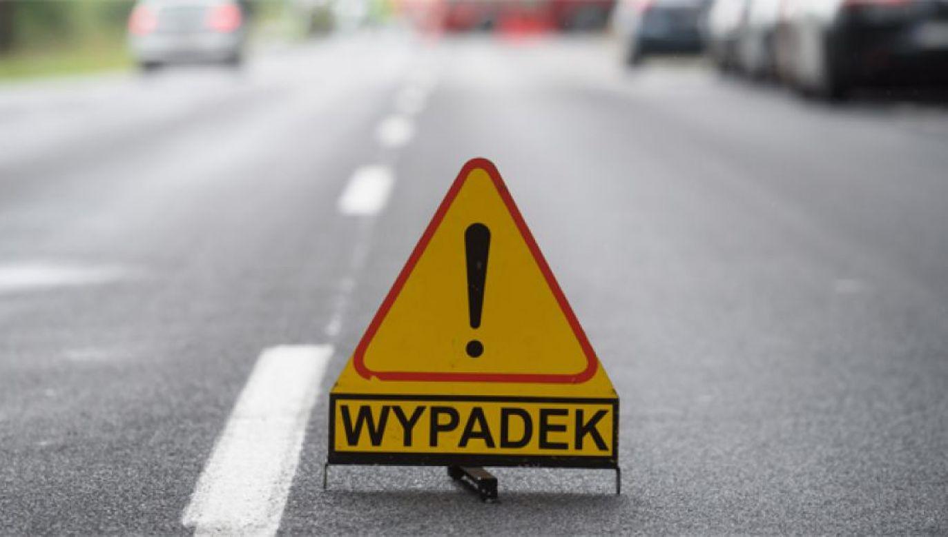 Samochód wypadł z drogi i uderzył w drzewo (fot. PAP/Jakub Kaczmarczyk)