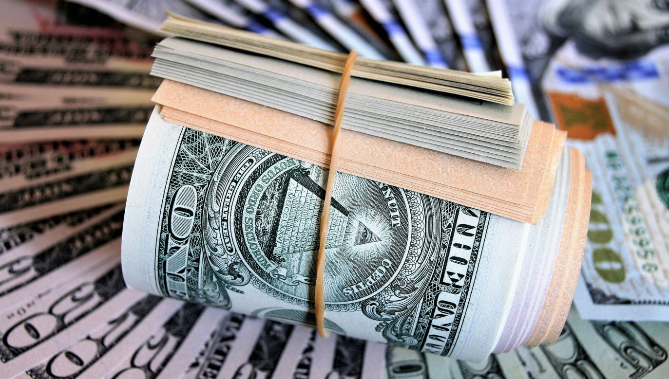 Pudełko z pieniędzmi odnalazł pracownik sortowni śmieci (fot. Pixabay)