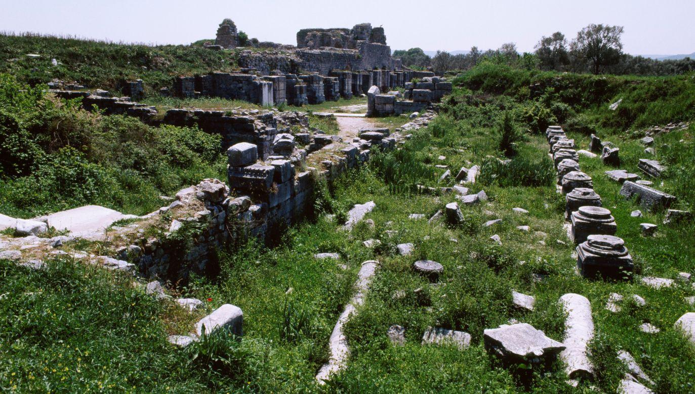 Dawne metropolie zarosły krzewami i po jakimś czasie zamieniły się w ruiny. Życie przeniosło się na prowincję. Na zdjęciu Łaźnie Faustyny, żony Marka Aureliusza w Milecie (obecnie - Turcja). Fot. DeAgostini/Getty Images