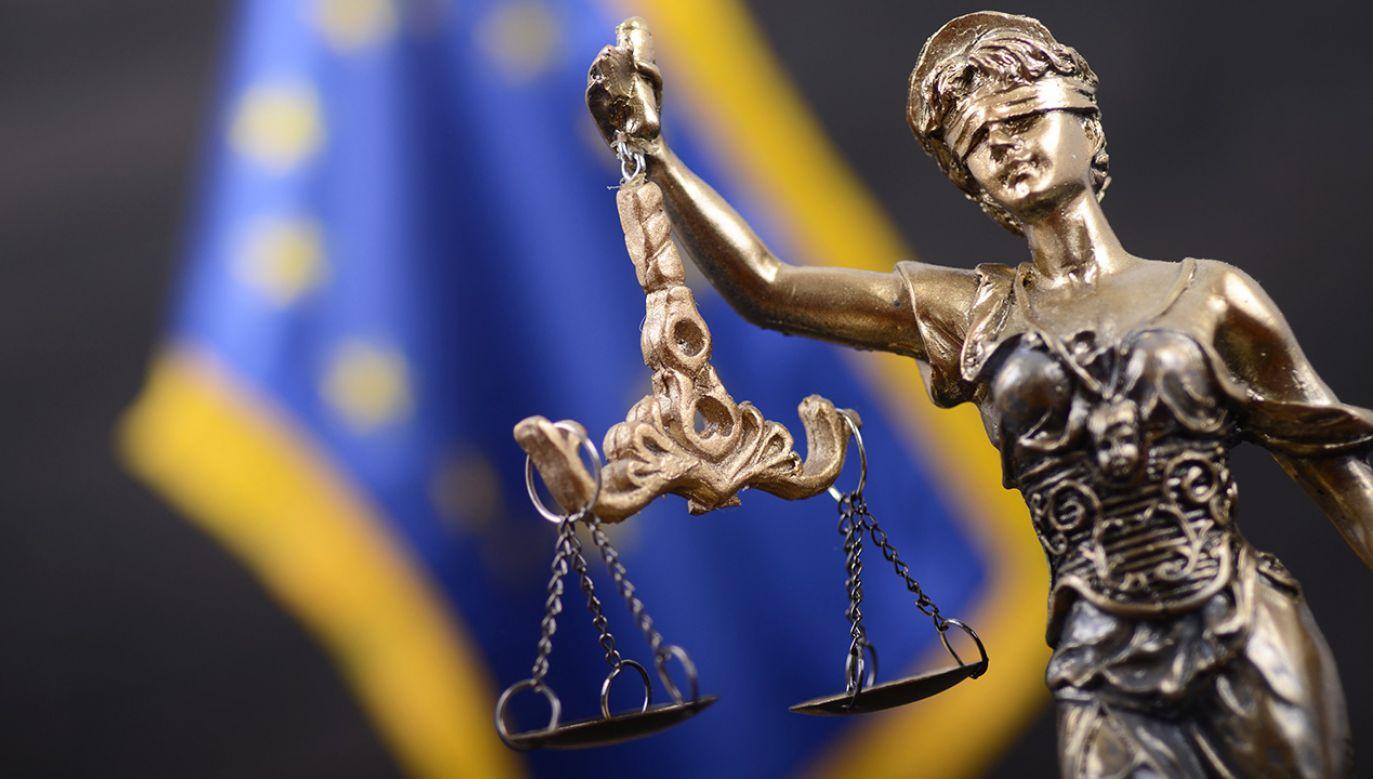 W Polsce analizy zgodności z Konstytucją dokonuje Trybunał Konstytucyjny (fot. Shutterstock/corgarashu)