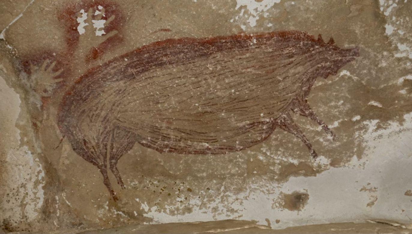 Malowidła mają około 45,5 tys. lat (fot. Griffith University)