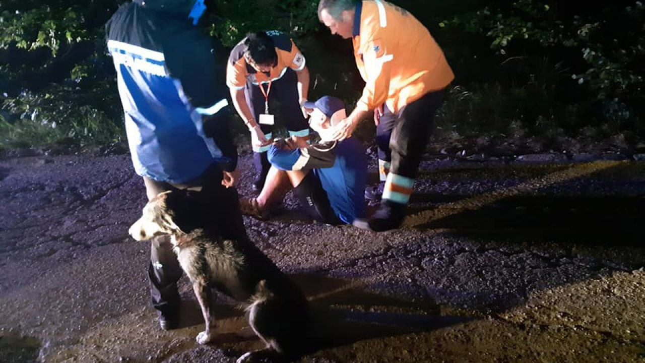 Kiedy temperatura zaczęła spadać, ranny nie mógł się ruszyć; zwierzę ogrzewało go swoim ciałem (fot. Facebook/Jandarmeria Caras Severin)