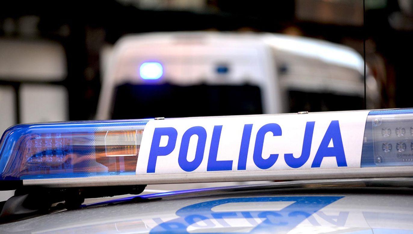 Trwa obława policyjna (fot. Shutterstock/DarSzach)