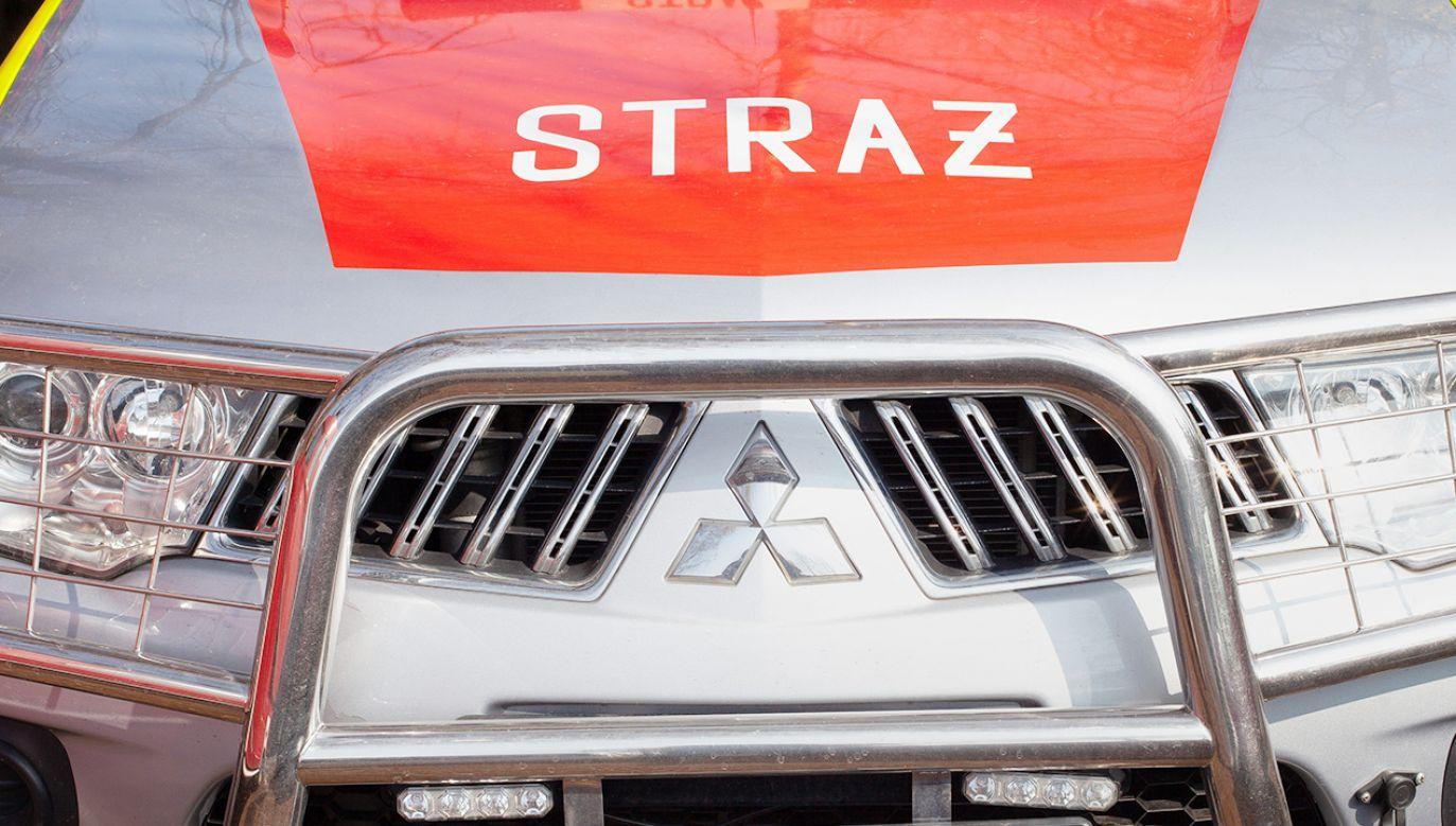 Strażacy zostali wezwani do jednego z domów w Brzegu  (fot. Shutterstock)