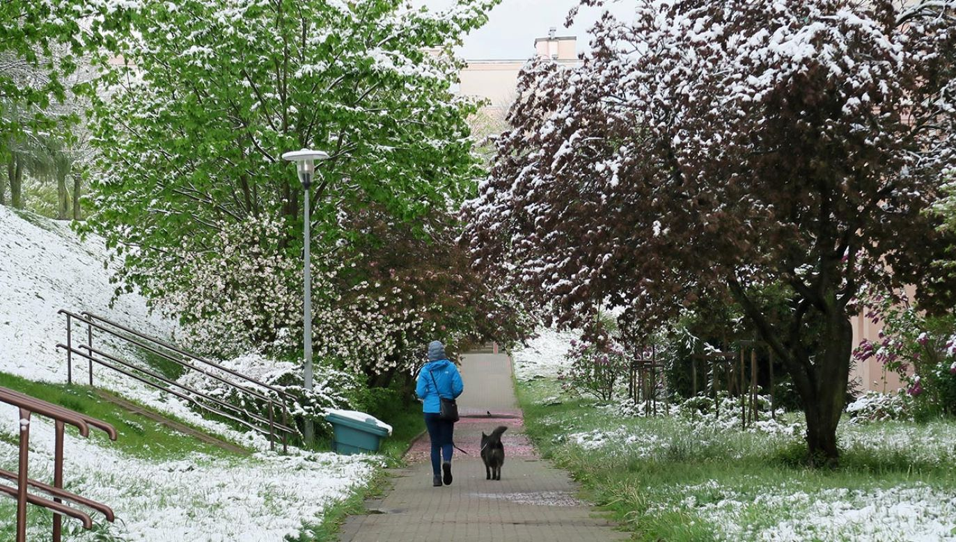 IMGW zaleca śledzenie komunikatów pogodowych (fot. PAP/Tomasz Waszczuk)