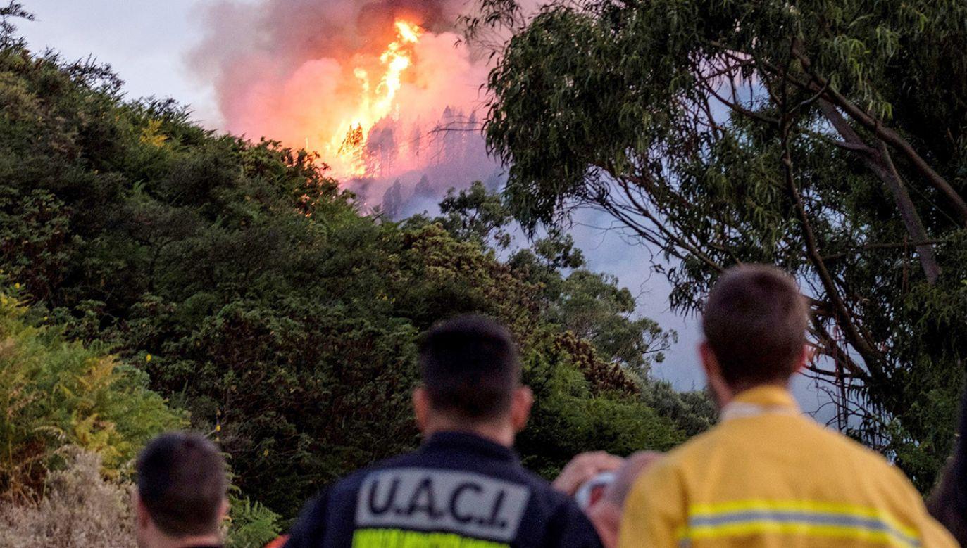 To największy od 2013 roku kataklizm spowodowany przez ogień na terytorium Hiszpanii (fot. PAP/EPA/Angel Medina G.)