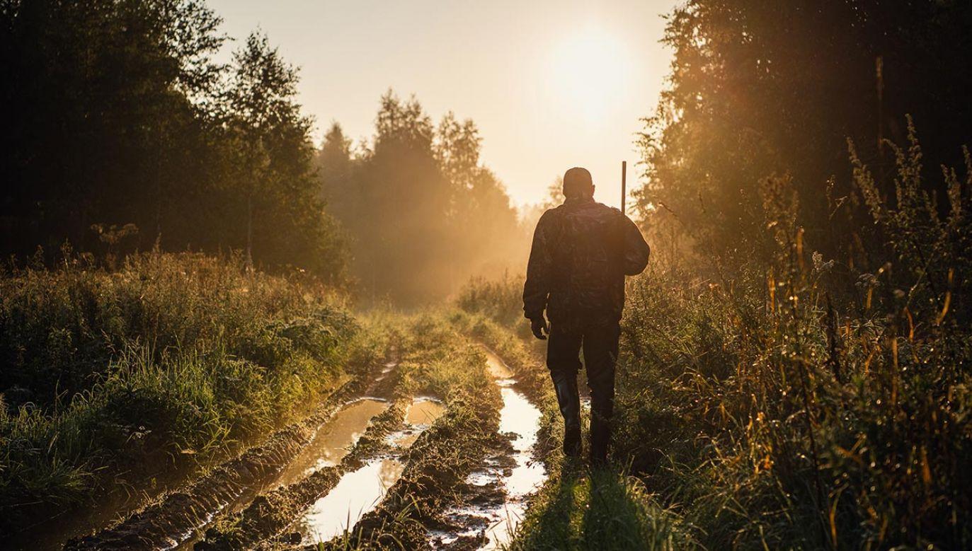 """""""Jakiekolwiek zmiany w tym zakresie nie są ani nie będą prowadzone"""" (fot. Shutterstock/Roman Kosolapov)"""
