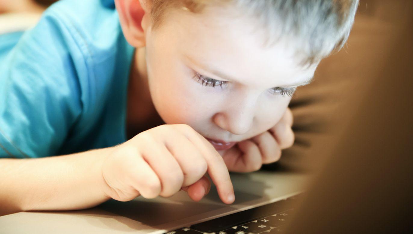 Zdaniem Sochy warto przyglądać się temu, jak inne kraje próbują rozwiązać problem dostępu dzieci do pornografii. Jako przykład wskazała Wielką Brytanię (fot. Shutterstock/OksanaAlex)